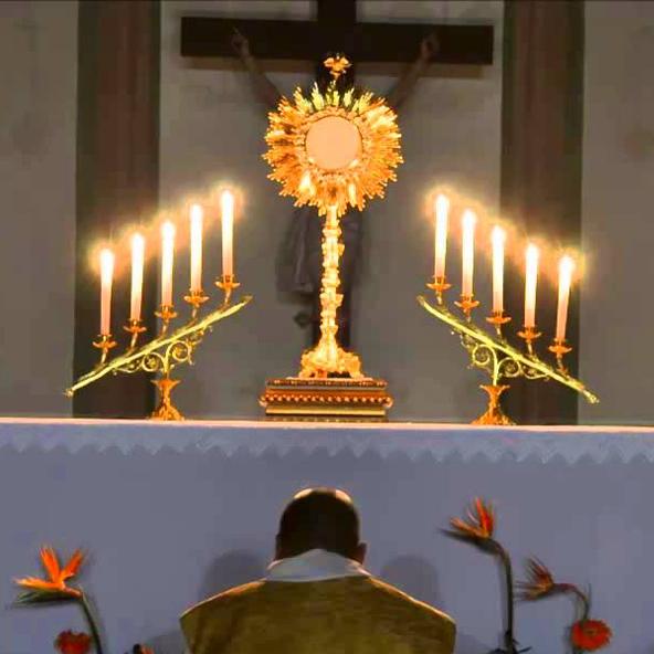 Padre faz adoração ao Santíssimo