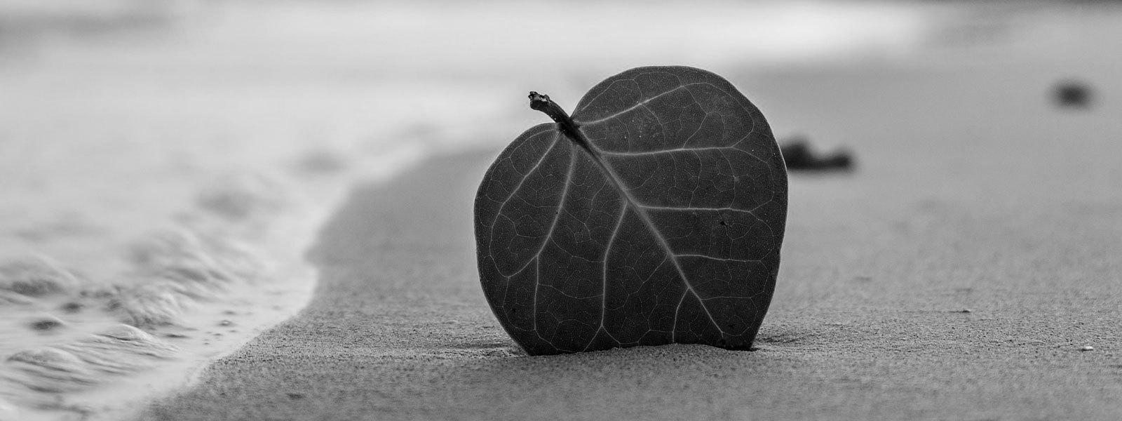 Evangelho e minimalismo | Desapego de coisas desnecessárias