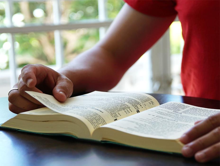 Palavra do Mês de Julho | A Lectio Divina – 5 degraus para viver a Palavra